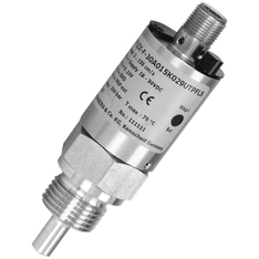 Flow transmitter - FLEX-F