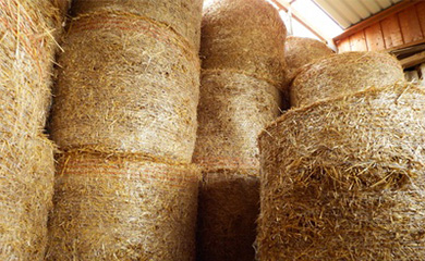 Straw and hay: Bundled safety.